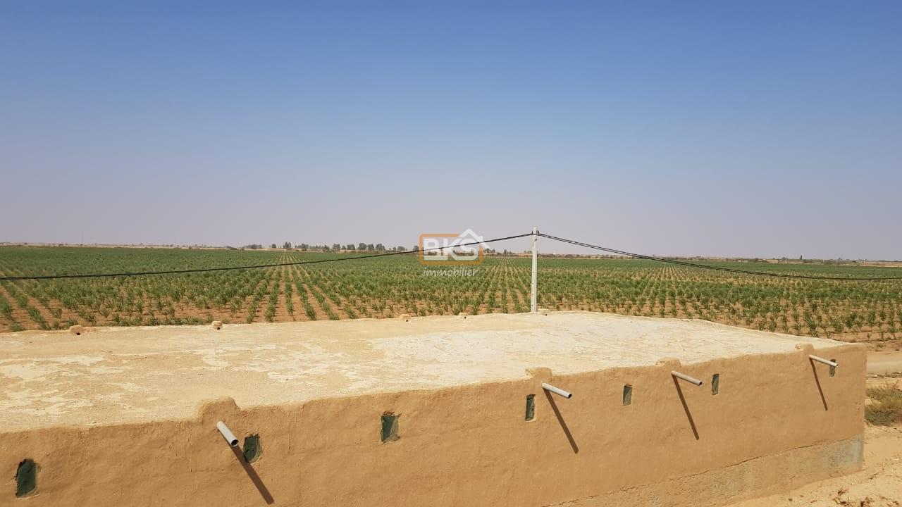 Terrain à vendre Marrakech Oudaya